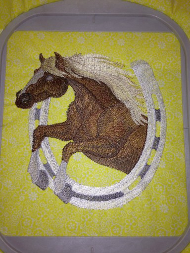 Test Stitch Out of Horse
