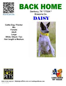 Daisy has been found!!!!!!!!!!!!
